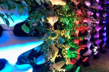 Uplighting, LED, landscape wall, private wedding, M Building, Wynwood, FL